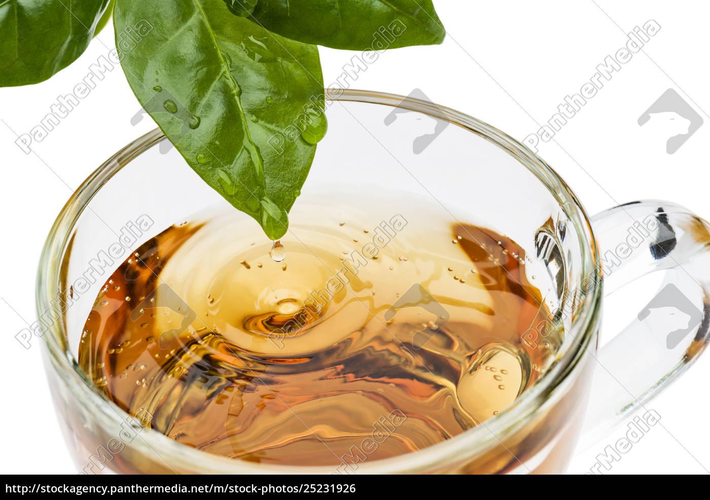 cup, of, tea - 25231926