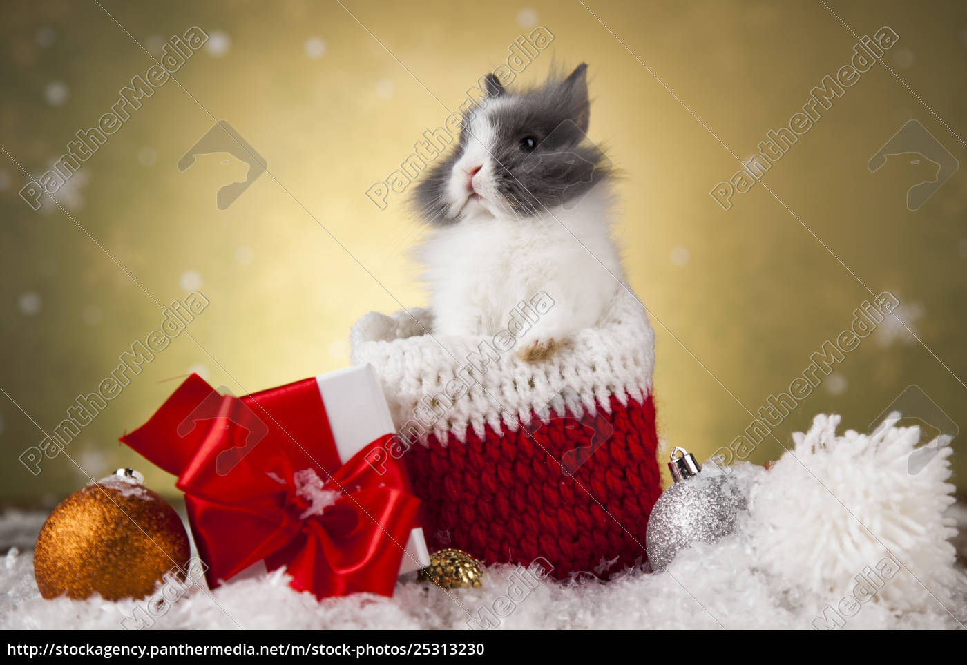 christmas, bunny, , santa, baby, red, hat - 25313230