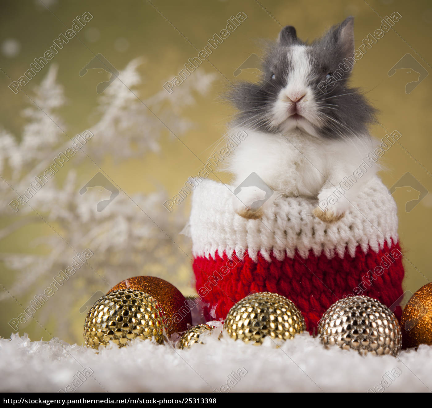 holiday, christmas, bunny, in, santa, hat - 25313398