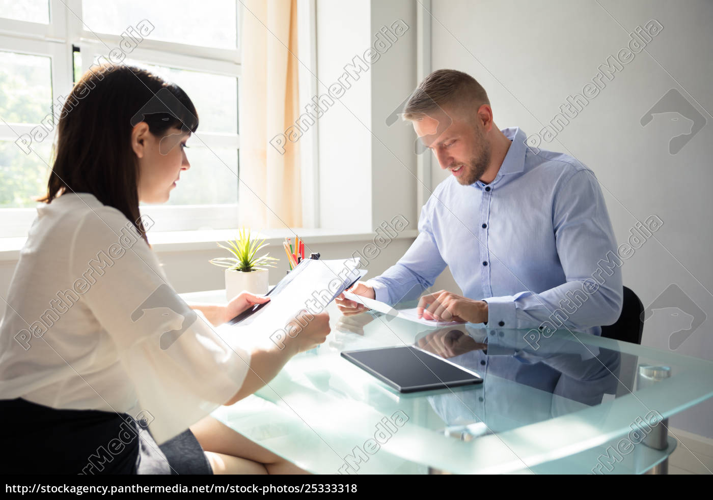 two, businesspeople, looking, at, document - 25333318