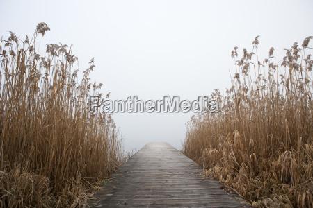 austrians fog sights europe mood radio