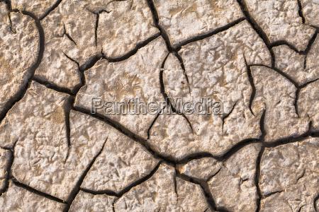 dry cracks in the mud of