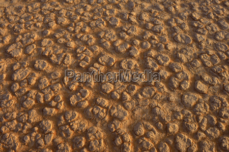 detail desert wasteland national park sights