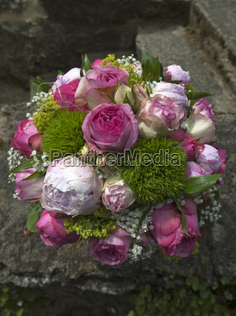 stronghold flower rose plant wedding marriage