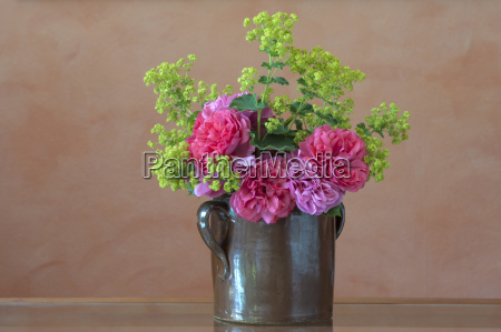 still life studio photography flower rose