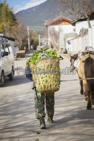 naxi chinese man hauls basket of
