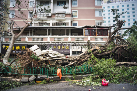 a few hours after super typhoon