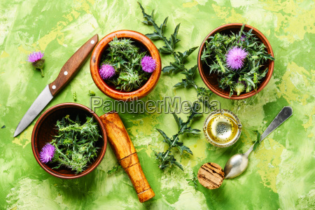 natural, herbs, medicine - 25411786