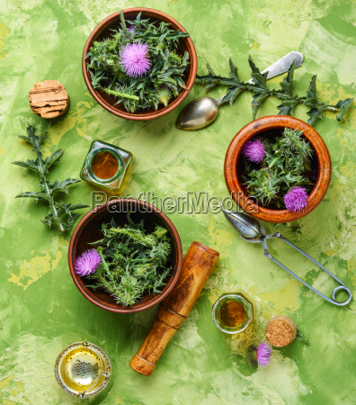 natural, herbs, medicine - 25411788