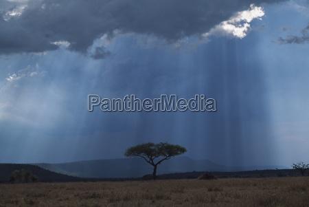 sunbeams pass through storm cloud with