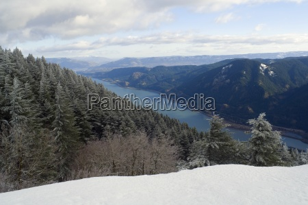 columbia river gorge seen from dog