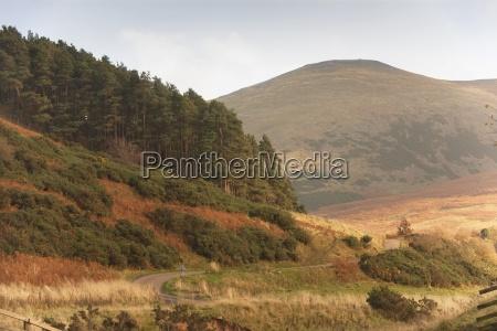 elsdon burn northumberland england a landscape