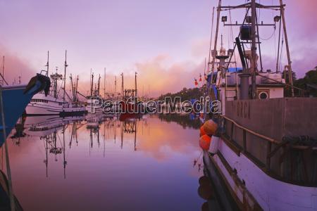 sunrise through the morning fog and