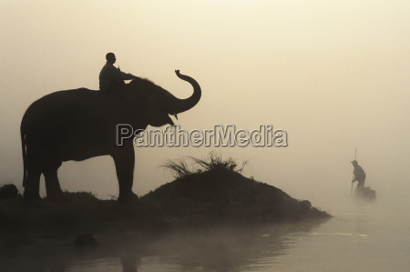 an elephant with its mahout stand