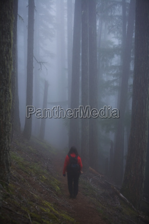 woman walking through misty old growth