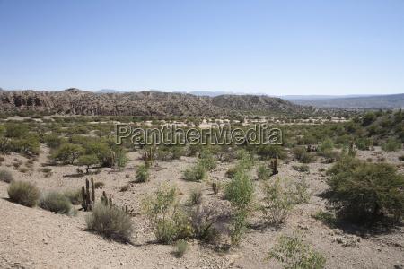 arid landscape in sud l