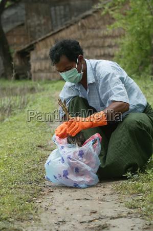 farmer buries a dead chicken in