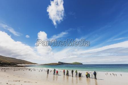 photographers on a beach on the