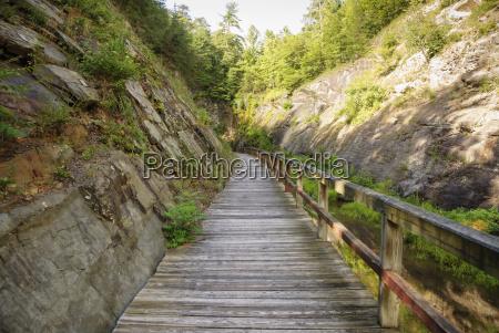 wooden walking bridge along chesapeake and