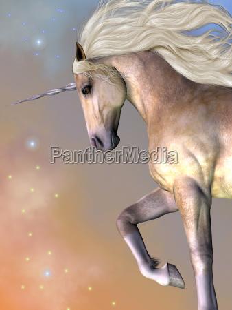dapple buttermilk unicorn