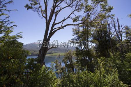 lago villarino nahuel huapi national park