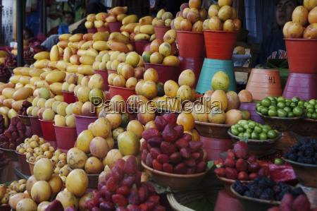 fruits for sale at the market
