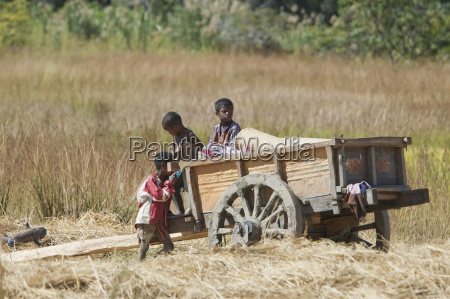 cart in isalo national park fianarantsoa
