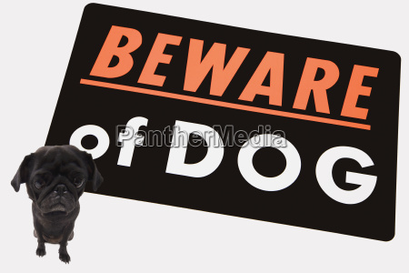 big sign saying beware of dog