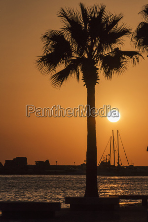 silhouette of sailboat masts building and