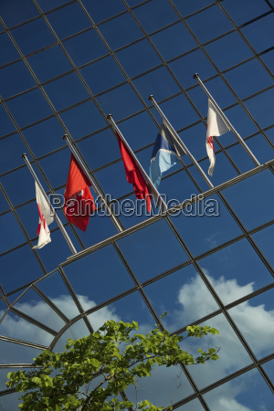 five flags on glass building near