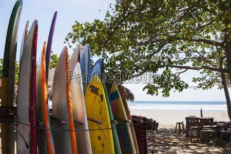 surf boards available for rent in