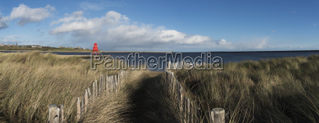 path lined with wooden posts and