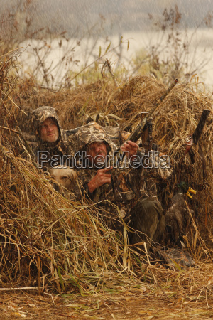 waterfowl hunters in blind with guns