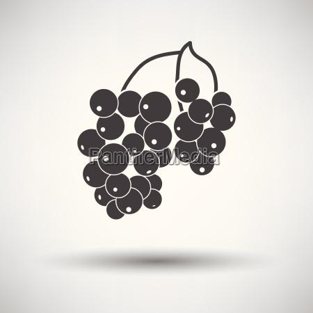 icon of black currant