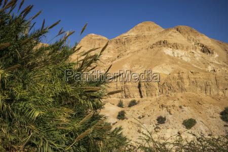 arid landscape of the desert against