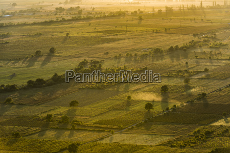 colourful sunset view of cultivated land