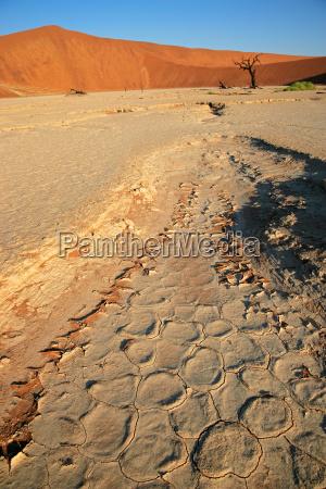 desert landscape namibia