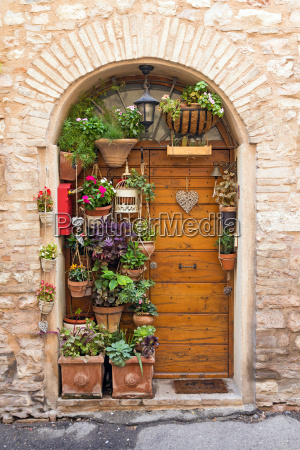 old wooden doors with plants and