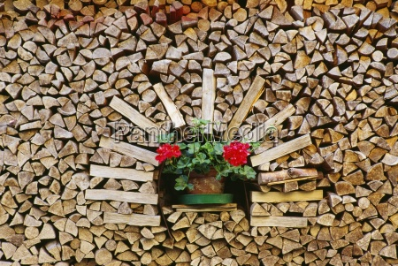 stack of wood with flower pot