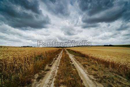 agriculture field with clouds