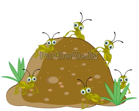 anthill with ant