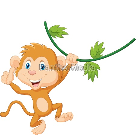 cute monkey hanging giving thumb up