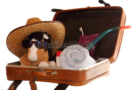 travel suitcase with cuddly toy