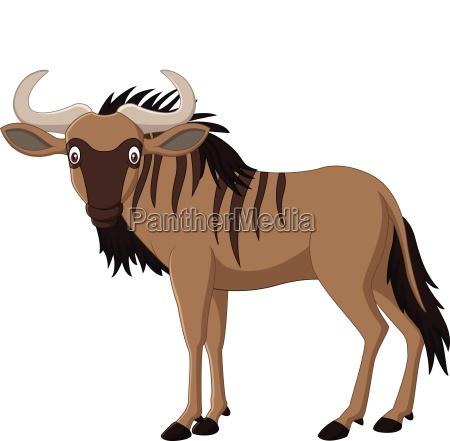 cartoon wildebeest isolated on white background