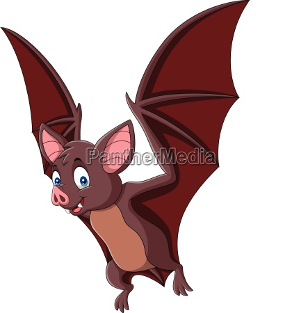 cartoon bat fly isolated on white