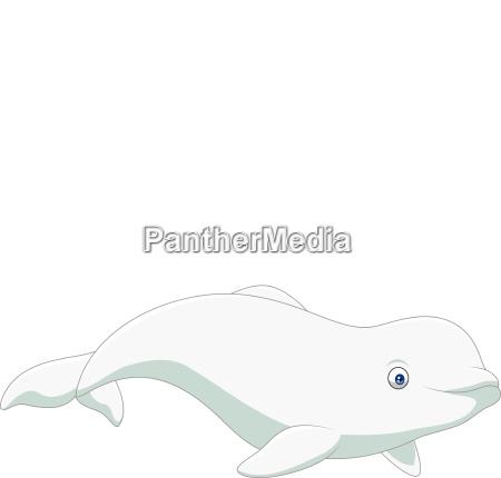 cartoon beluga isolated on white background