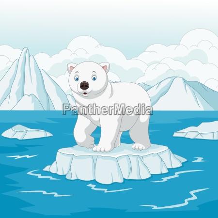 cartoon polar bear isolated on ice