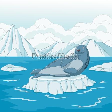 cartoon seal on ice floe