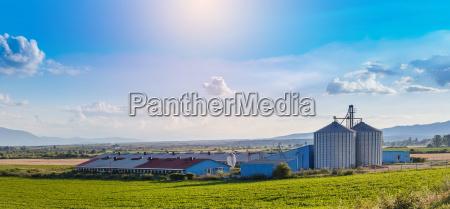 farm for pig