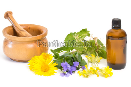 medicinal plants for cough